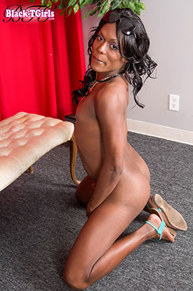 t shemale pornstar candii apple 03 Shemale Pornstar Candii Apple Strips Down On Black Tgirls!